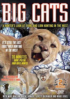 Big Cats - Hunting Mountain Lions DVD