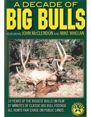 A Decade Of Big Bulls DVD